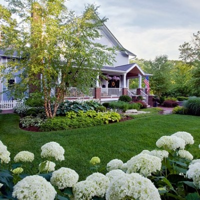 Front Yard Landscaping Includes Bright Flowers